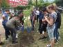 Засаждане на дървета от 7 клас